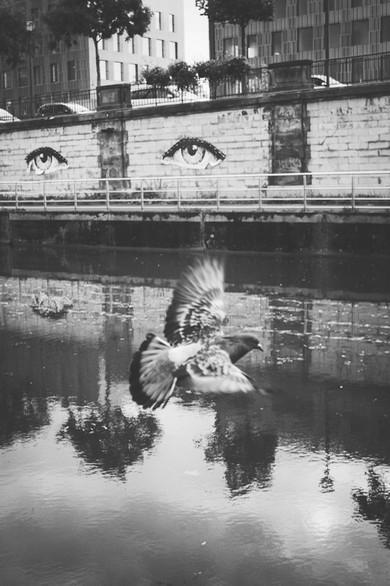 Damien Lorek, Mulhouse (3).jpg