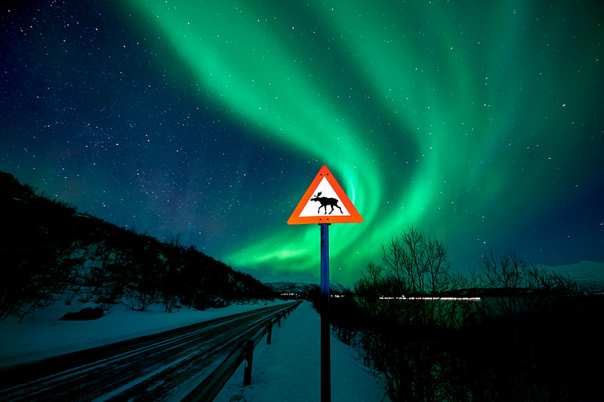 Signalisation_norvégienne.jpg