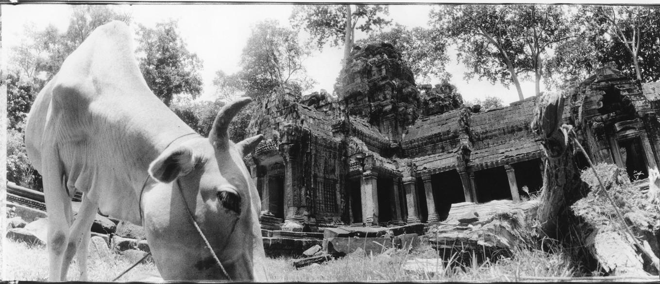 Matthieu Verdeil, Angkor 1999 (8).jpg