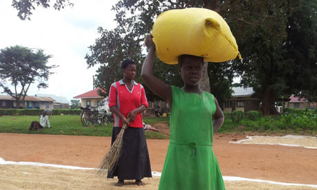 Child labour is still a big issue in most of rural Uganda