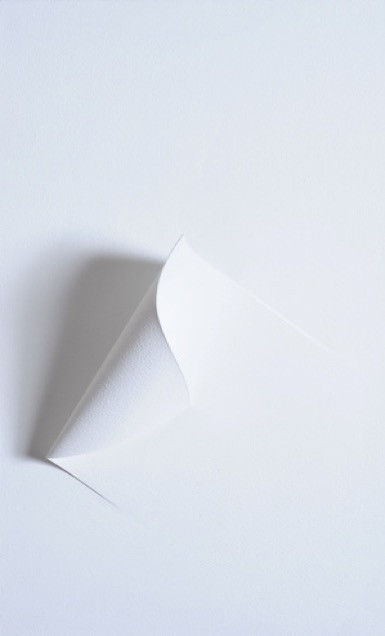Superficie blanca XXXVII - 2010