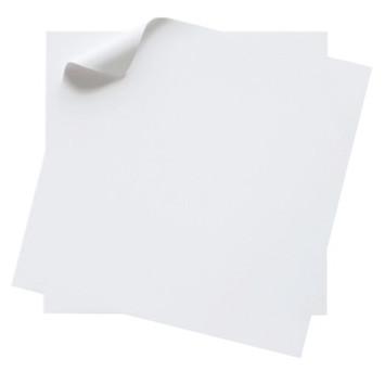 Superficie blanca LXXIII - 2011