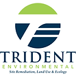 trident engineering.png