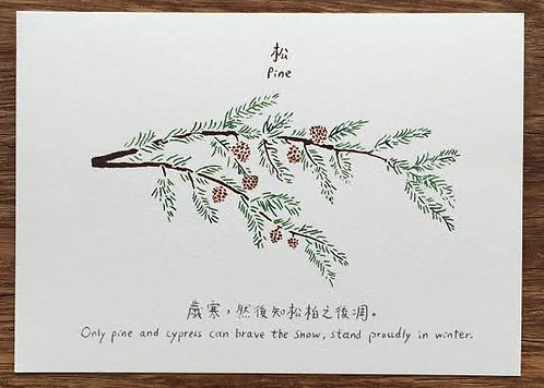 Hong Kong Flowers postcard