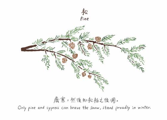 Pine 松
