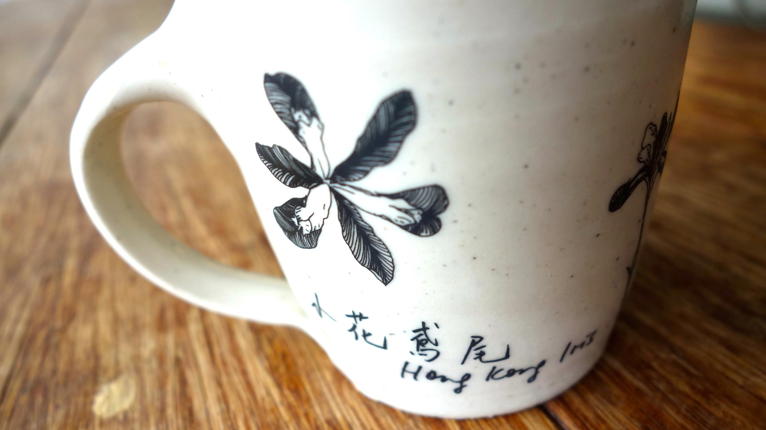 Hong Kong Iris 小花鳶尾