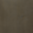 1143 Onyx Silver.png