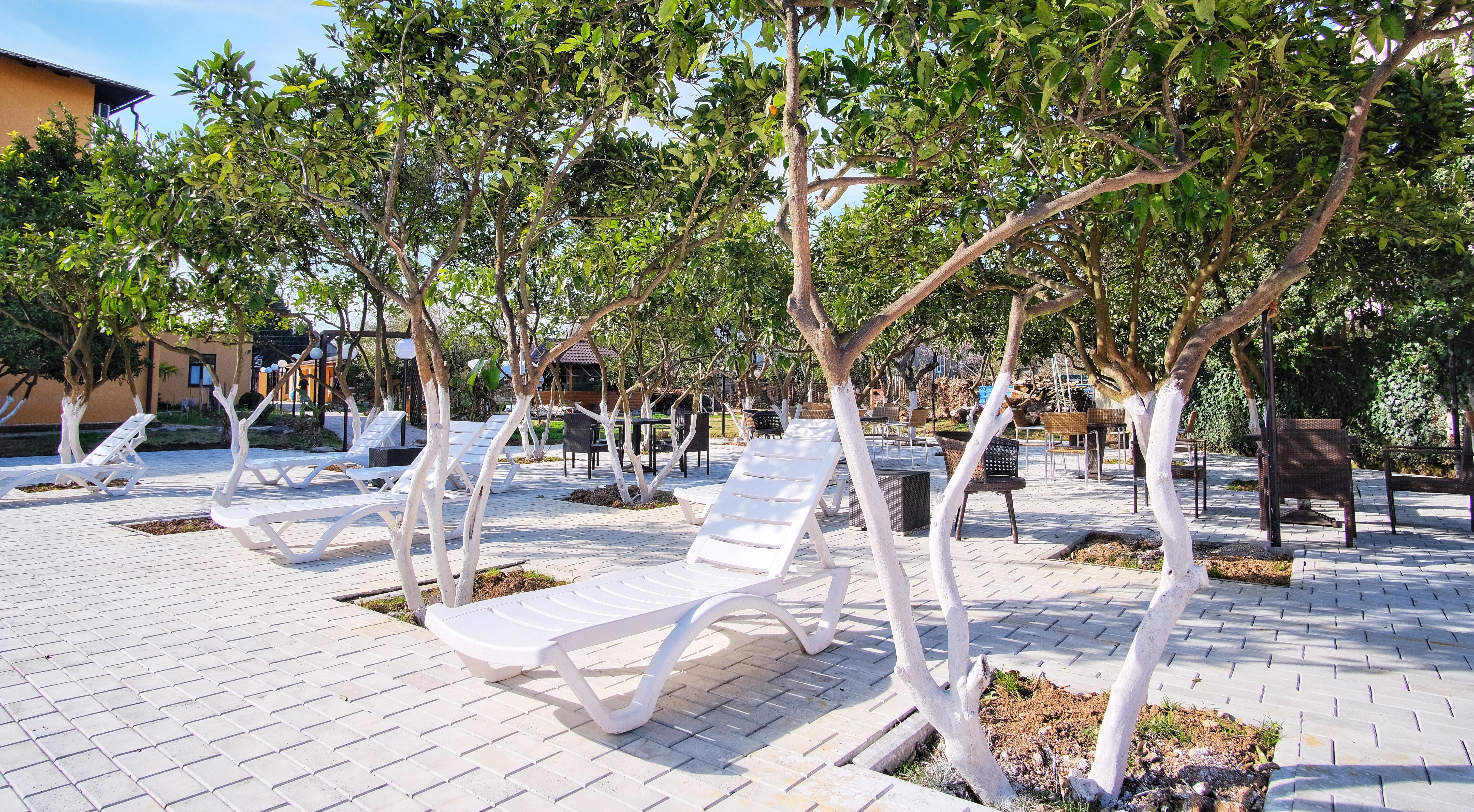 Отель ПАПА мандариновый сад, бассейн