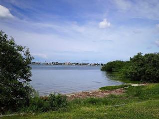 Shoreline Destination Report: War Veterans' Memorial Park