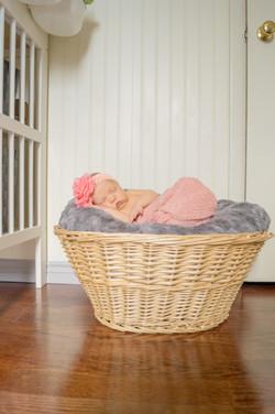 Charlotte in a basket