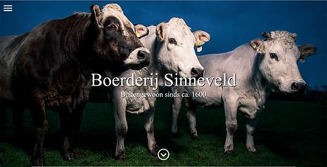 Homepage Sinneveld