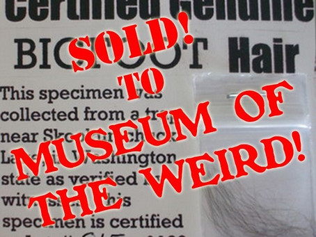 BIGFOOT HAIR SAMPLES SOLD AT AUCTION TO MUSEUM OF THE WEIRD!