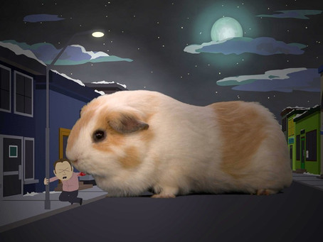 The Prehistoric Guinea Pig was Over 1.5 Meters Big, and Probably Hung Out With Dinosaurs.