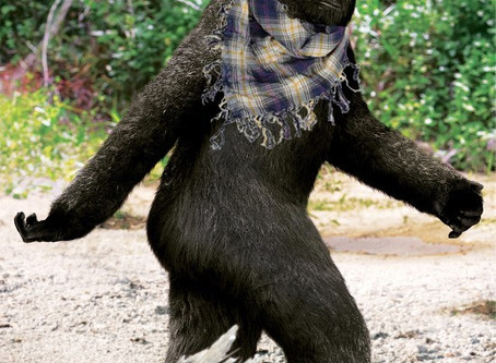Hipster Bigfoot Found in Brooklyn?