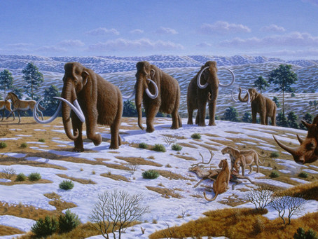 HUNDREDS OF ICE AGE REMAINS FOUND IN MEXICO