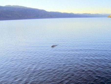 NEW PHOTO OF THE LOCH NESS MONSTER SURFACES