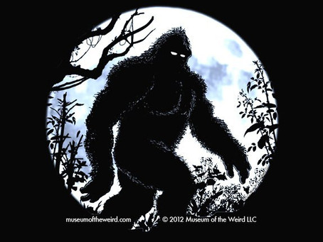 FOR IMMEDIATE RELEASE: DNA STUDY CONFIRMS EXISTENCE OF BIGFOOT!