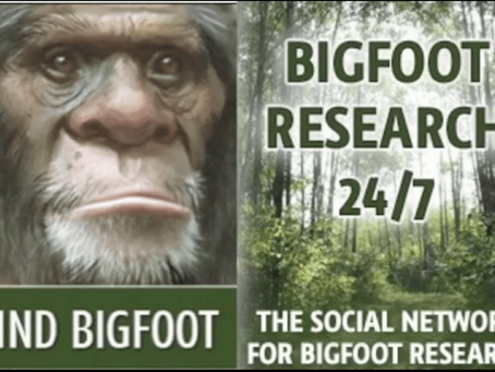 DID A CAMPER CATCH BIGFOOT FOOTAGE WITH A SMART PHONE?
