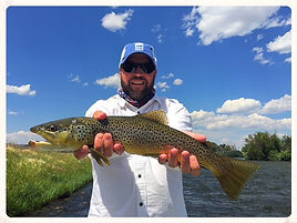 20 inch Madison River Brown Trout
