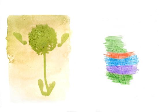 Herbier d'artiste, école Courrège, classe de CM1, PPA 2021 ©candiD