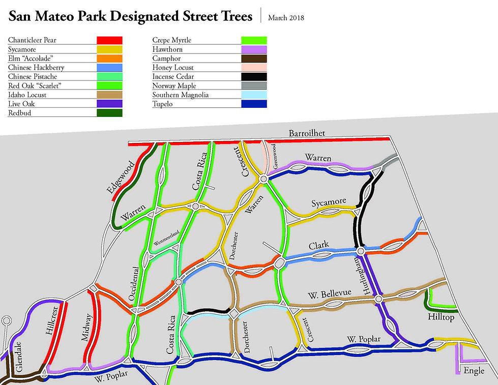 Designated Street Trees.jpg