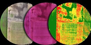 NDVI falsi colori e infrarosso