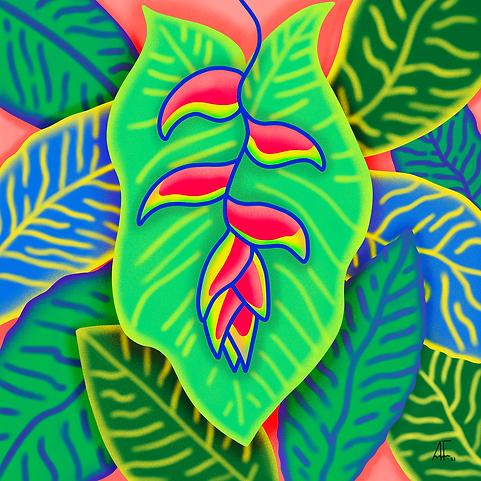 Leafy-Boy.png