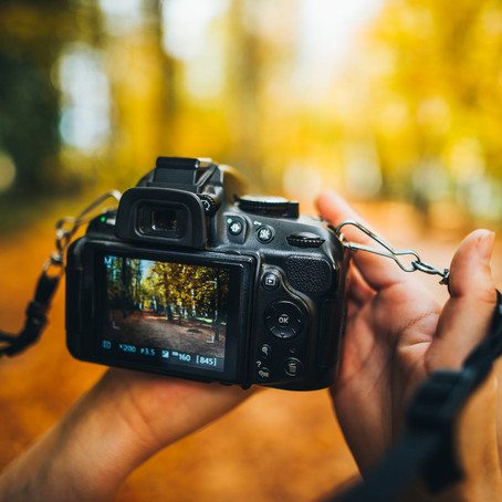 HARVARD IS OFFERING AN ONLINE COURSE IN DIGITAL PHOTOGRAPHY FOR FREE