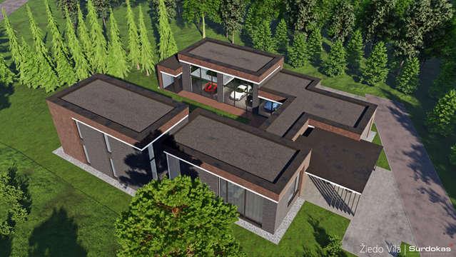 ŽIEDO VILA | Modernaus namo su privačia automobilių kolekcija projektas | Architektūros vizualizacija | Surdoko architektūros studija