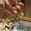 Thumbnail: Jasmine Flowers (Limited Edition)