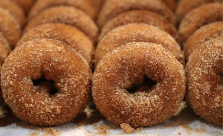 Oronoque Farms Apple Cider Donuts!