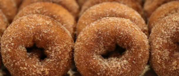 Oronoque Farms Apple Cider Donuts!