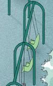 Therapeutic Swings