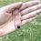 Thumbnail: Thin 14k Solid Gold Lapis Lazuli Gemstone Necklace