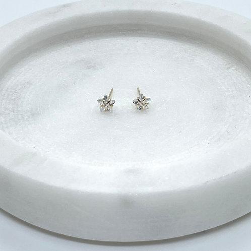 14k Solid Gold Star Cubic Zirconia Earrings