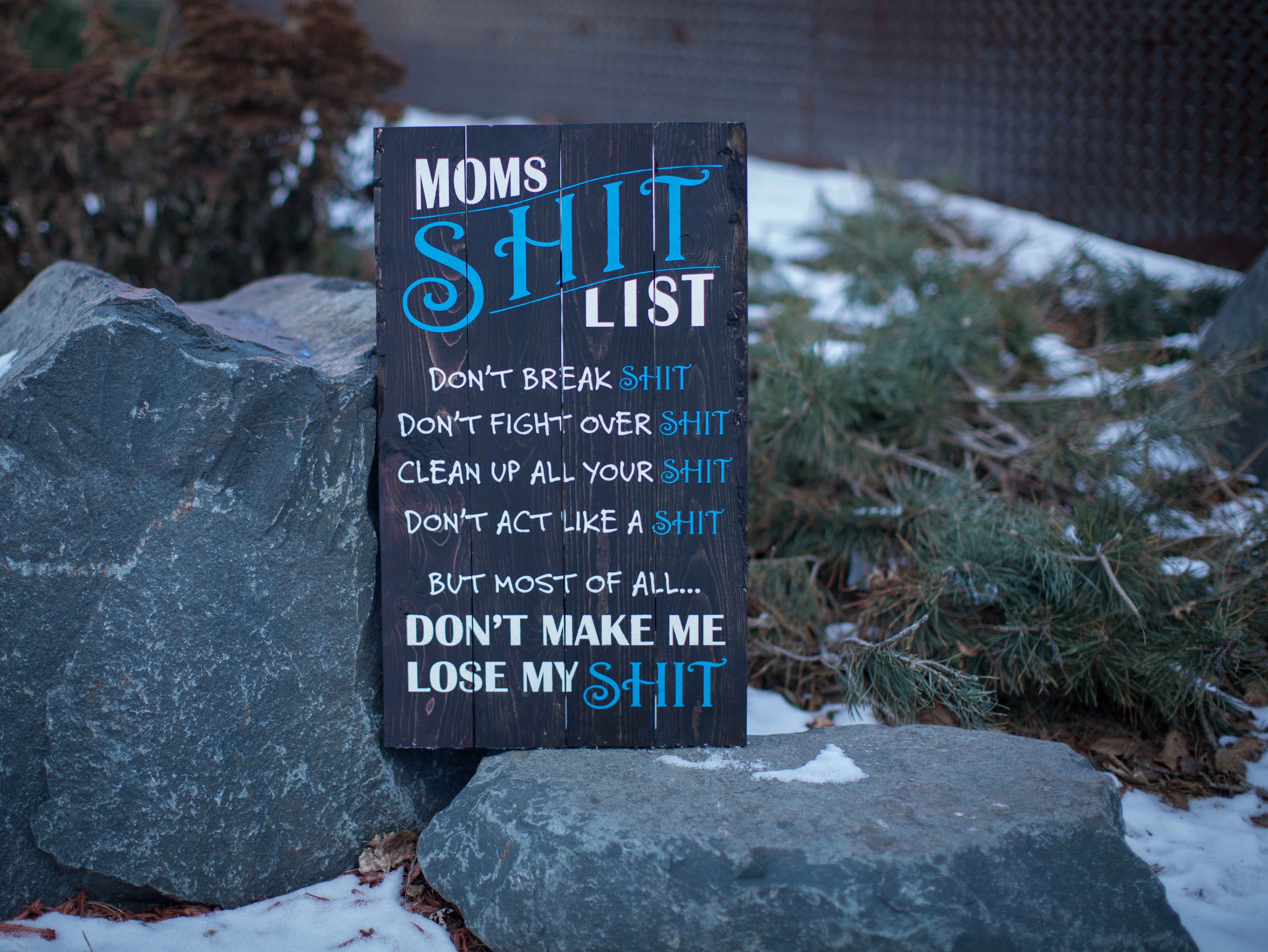 44) Moms Shit List