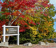 acadia-in-fall.png