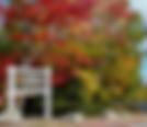acadia-in-fall.png