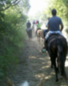 Horseback Riding Omaha Ne