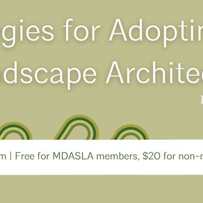 Webinar: Strategies for Adopting BIM in Landscape Architecture
