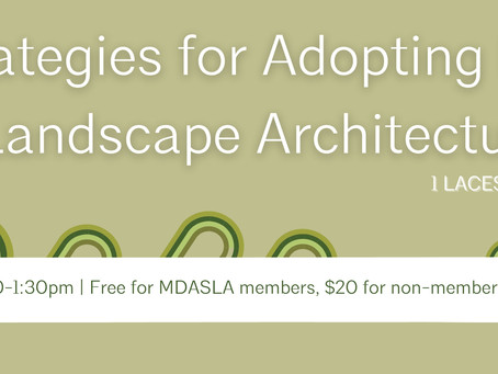 Webinar: Strategies for Adopting BIM in Landscape Architecture