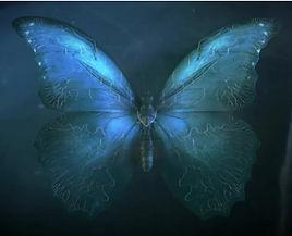 Butterfly Effect.jpg