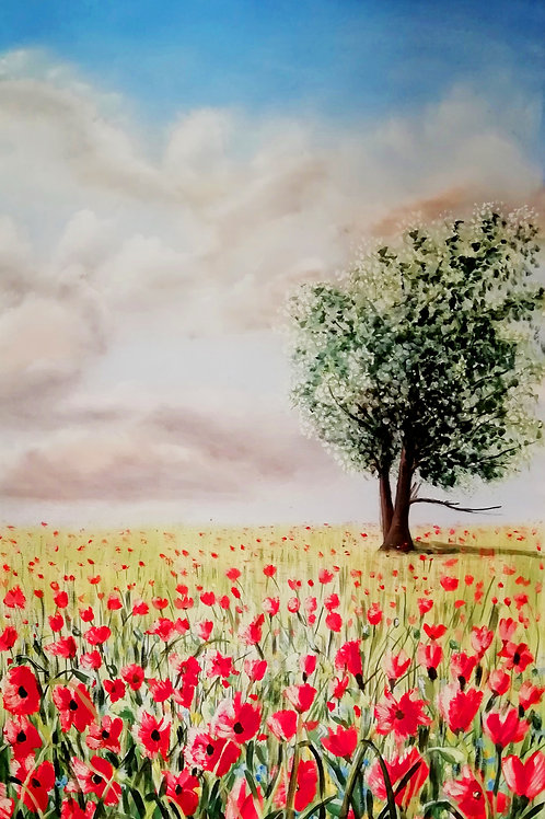 Poppiesfield with tree