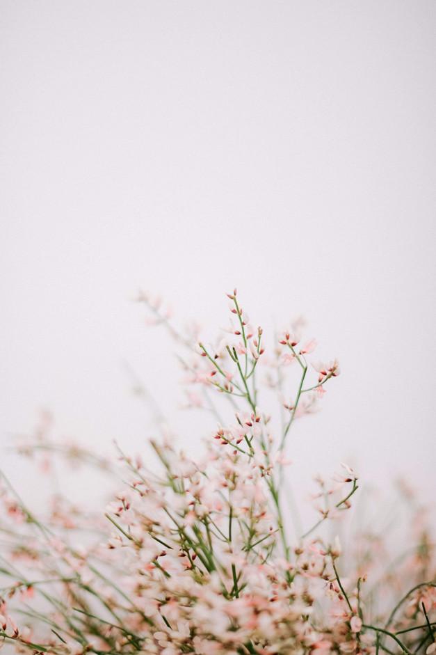 floral-design-paris.jpg