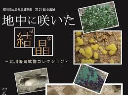 展覧会/ Exhibition