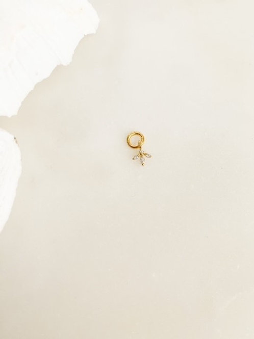 Little Lilly Charm