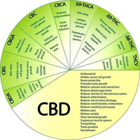 cannabinoid-pie-chart.jpg