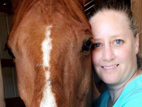 A Horse Named Cowboy