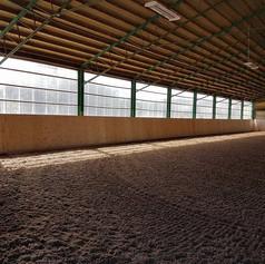 indoor2.jpg