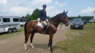 Theo - Trained, shown in 5 yr olds